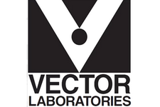 Vector Labs