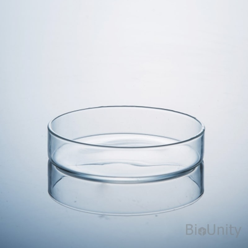 Чашка Петри стерильная Ø100мм, для клеточных и тканевых культур, обработанная поверхность, PS