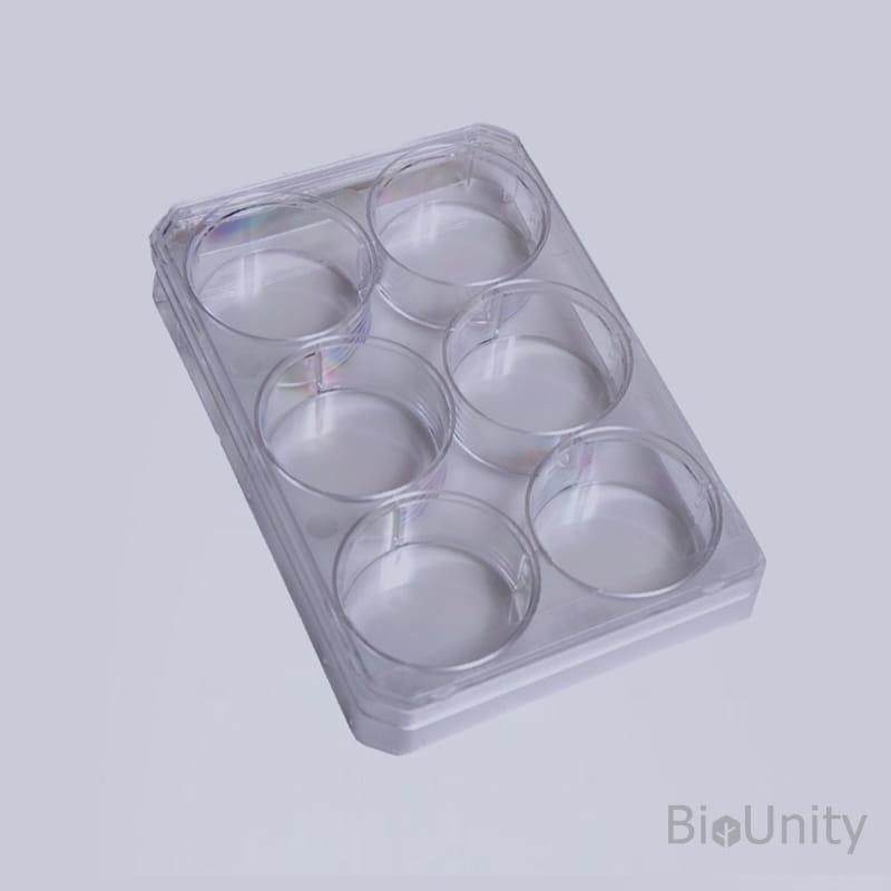 Планшет культуральный 6-луночный, с обработанной поверхностью, для монослойных культур клеток, с крышкой, плоскодонный, стерильный, PS